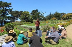 IMG 0049 300x199 Cultivating Consciousness And Vegetables At The Esalen Institute