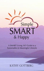 SMH book cover E1[1]