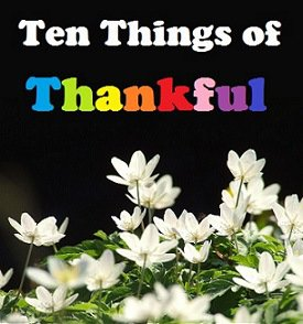 1ed57 tenthingsbanner 3rd Annual SMART Living Gratitude Challenge 2014...Ten Things of Thankful  TToT