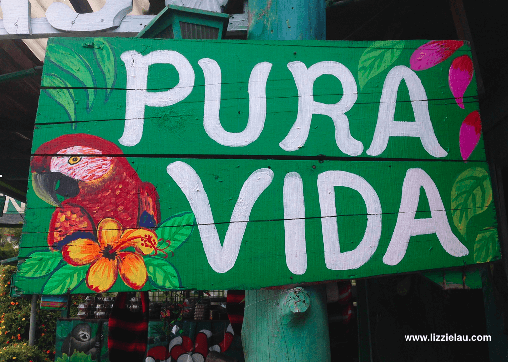 Pura vida the costa rica version of rightsizing for De signs