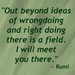 Rumi SMART Living 365